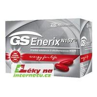 GS Enerix
